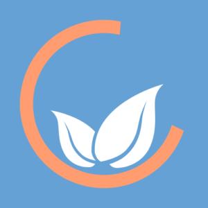Camélia Web – Prestations locales Web & Graphiques
